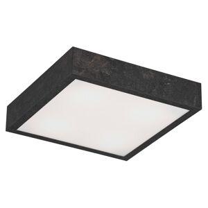 EULUNA Stropní světlo Tromsö, 40x40 cm, betonově šedá