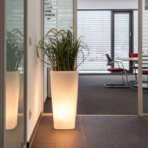 DEGARDO Dekorativní lampa Trevia V, bílá průsvitná