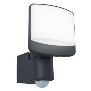 Eco-Light Venkovní LED reflektor Sunshine, senzor