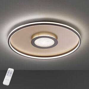 FISCHER & HONSEL LED stropní světlo Bug kulaté, rez 60cm