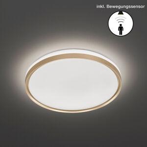 FISCHER & HONSEL LED stropní světlo Jaso BS, Ø 49 cm, zlatá