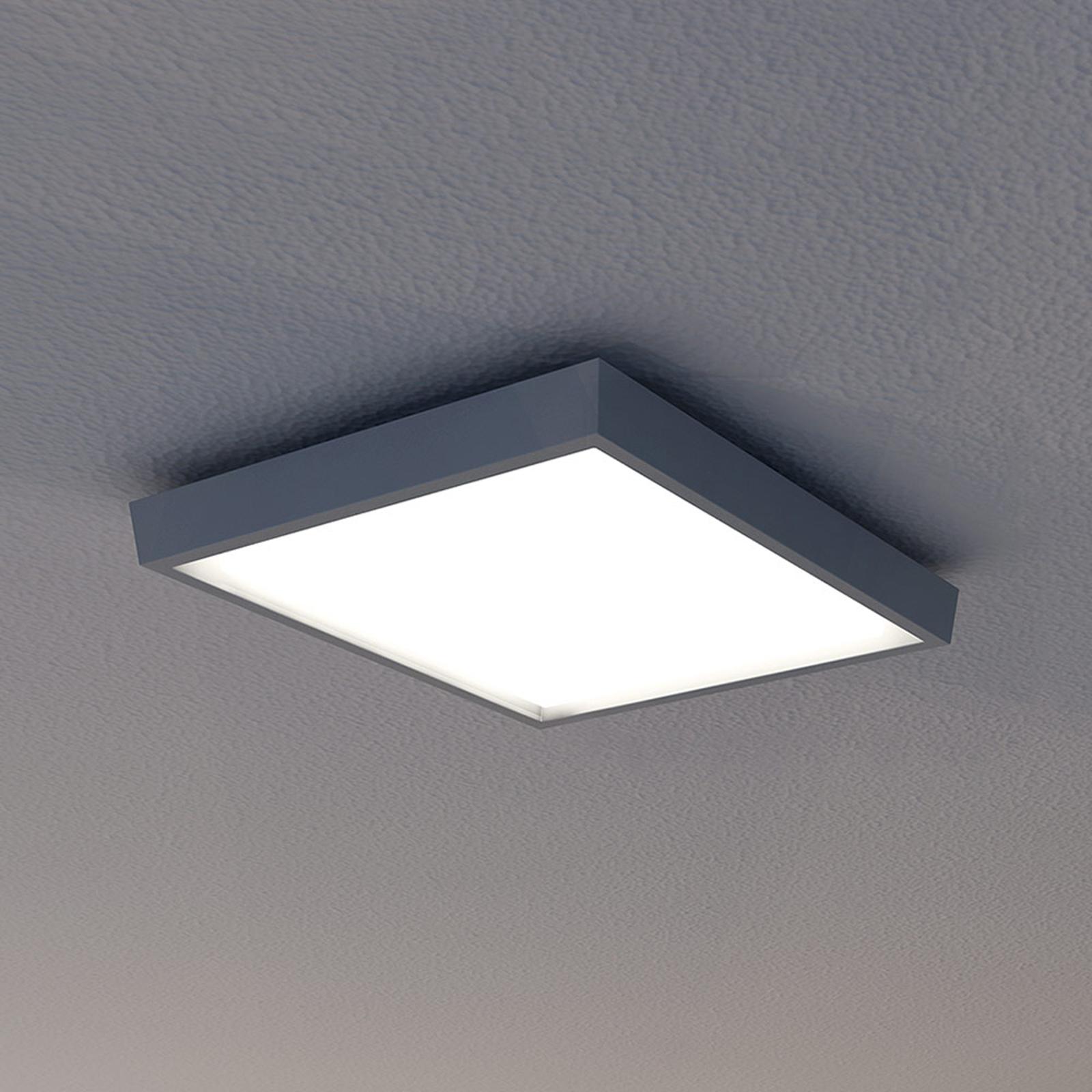 Näve LED venkovní svítidlo IP54, antracit, 27 x 27 cm