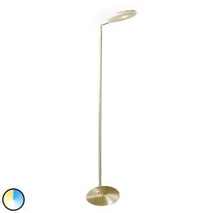 Paul Neuhaus Paul Neuhaus Martin LED stojací lampa CCT mosaz