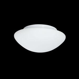Searchlight Venkovní stropní světlo ze skla Wayne, 23 cm, IP44
