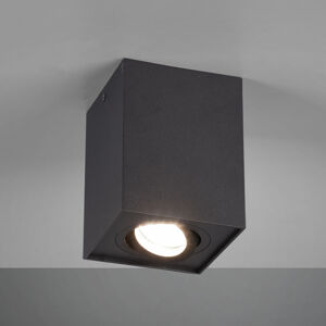 Trio Lighting Stropní světlo Biscuit, 1 zdroj, černá