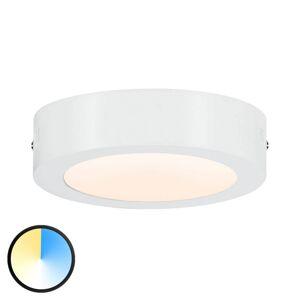 Paulmann Paulmann Carpo LED stropní světlo kulaté bílé 17cm